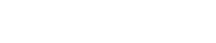 The Insurance Institute of Cardiff